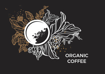 Template of branch of coffee tree, leaves, flowers and beans. Vector