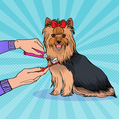 Pop Art Female Hand Holding Toothbrush with Toothpaste. Brushing Teeth Yorkshire Terrier. Pet Healt Care. Vector illustration