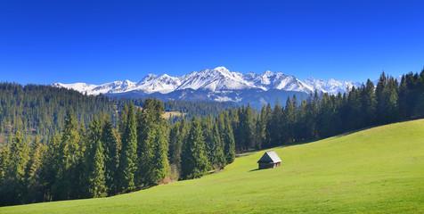 Photo sur Aluminium Bleu fonce Sunny summer day in Alps