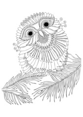 Little owl sits on fir tree branch.  Hand drawn picture. Sketch for anti-stress adult coloring book in zen-tangle style. Vector illustration for coloring page.
