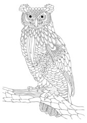 Wise owl. Hand drawn picture. Sketch for anti-stress adult coloring book in zen-tangle style. Vector illustration for coloring page.