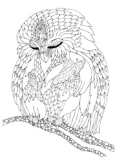 Sleeping owl. Hand drawn picture. Sketch for anti-stress adult coloring book in zen-tangle style. Vector illustration for coloring page.