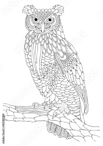 Wise Owl Hand Drawn Picture Sketch For Anti Stress Adult Coloring Book In