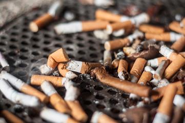 mégots de cigarettes dans un cendrier dans la rue