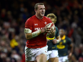 Autumn Internationals - Wales vs South Africa