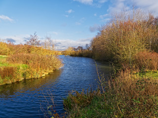 The entrance to a small lake winds between banks lined with bare trees and shrubs in the autumn sunshine.