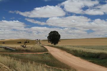 Landscape north of Adelaide, Australia