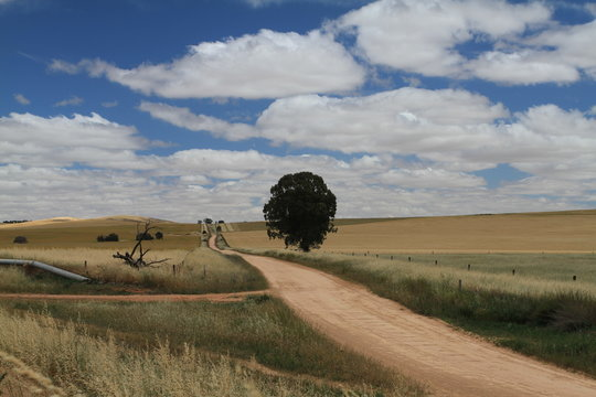 Landscape north of Adelaide, Australia