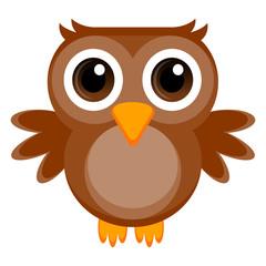Isolated cute owl