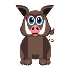 Cute wild pig