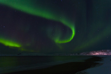 Aurora Borealis (Northern Lights) above coastal sea