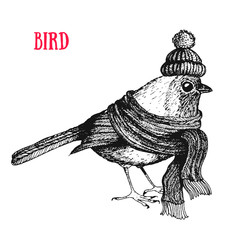 Bird vector illustration. Vintage bird in a scarf and hat. Autumn or winter bird. Engraved style.