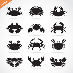 Set of vector crab icons on white background. Aquatic animals.