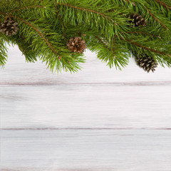 Web banner with natural pine branches with cones