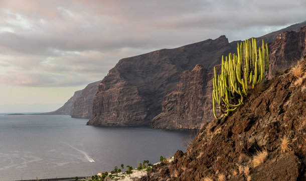 Los Gigantes, Tenerife, Canary Islands, Spain.