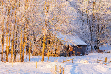 Snowy winter road by an old barn in the countryside