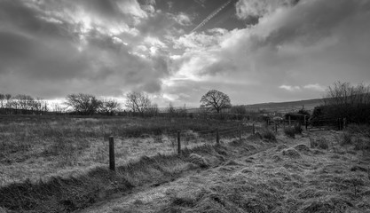 A black and white English countryside landscape scene