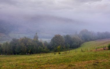 rural area in mountains on a cloudy foggy morning. gloomy but gorgeous landscape with trees and fields on a rolling hills in autumn
