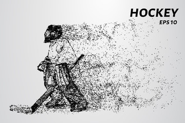 Hockey from the particles. The goalkeeper consists of circles and points. Vector illustration