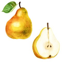 Watercolor illustration. Picture of a pear and a half of a pear.
