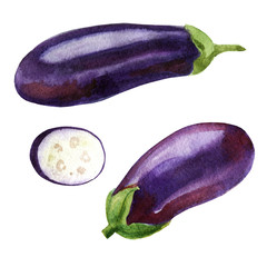 Watercolor illustration. Image of eggplant from different sides, aubergine slices.