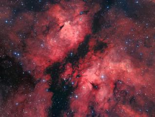 IC1318 - The Butterfly Nebula