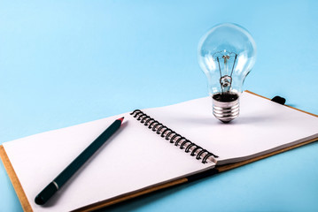 Pen and bulbs in open notebook isolated on a blue background