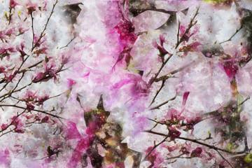 Akawarelowa magnolia abstrakcja