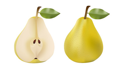 Pears set vector illustration on white background
