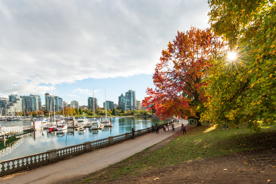 Autumn colours on the sea wall on stanley park vancouver canada