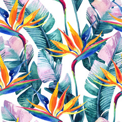 Foto op Canvas Paradijsvogel Watercolor tropical seamless pattern with bird-of-paradise flower.