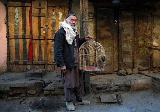 An Afghan man holds a cage of quails for sale at a bird market in Kabul