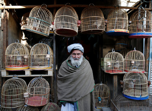 An Afghan man looks on as he stands at a bird market in Kabul