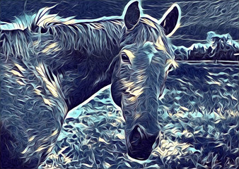 freehand horse art illustration paint