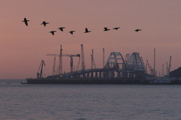 A flock of birds fly in front of the arches of a road-and-rail bridge, which is constructed to connect the Russian mainland with the Crimean peninsula in the Kerch Strait