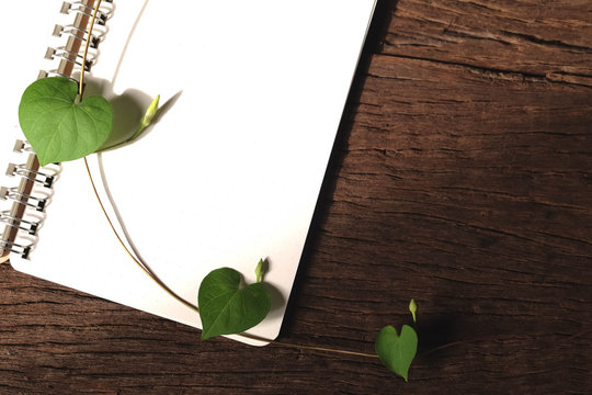 Leaves heart-shaped with a notebook on a wooden table