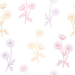 Cosmos flower graphic color seamless pattern sketch illustration vector