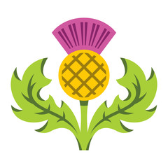 Thistle. Vector Flat style colorful Cartoon illustration.