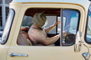 Man wearing a weird cat mask while driving