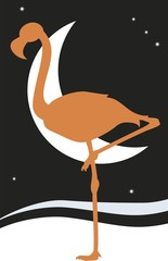Flamingo vector silhouette