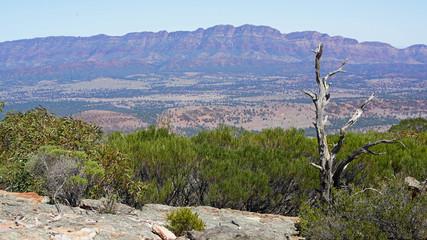 View from Rawnsley Bluff, Flinders Ranges South Australia