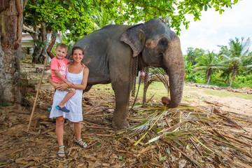 Caucasian tourists make a photo near elephant in Sri Lanka