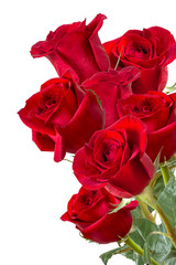 Image with red roses.