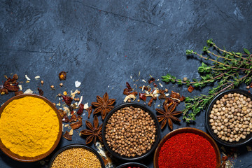 paprika, turmeric, red pepper and other fragrant spices on dark background, top view