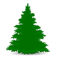 Christmas tree, green, lush, silhouette on white background,