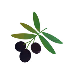 Colored isolated icon of branch with black olives and green leaves. Natural cooking ingredient. Healthy food. Isolated flat vector.