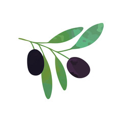 Two black ripe olives on branch with green leaves. Organic or vegan food concept. Graphic design template for image product, card or sticker. Colored flat vector isolated on white