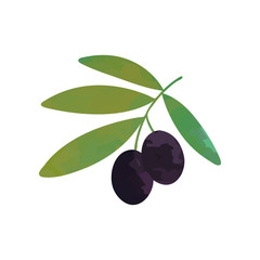 Cartoon illustration of branch with black ripe olives and green leaves. Decorative natural element for menu or cosmetic product. Isolated flat vector design