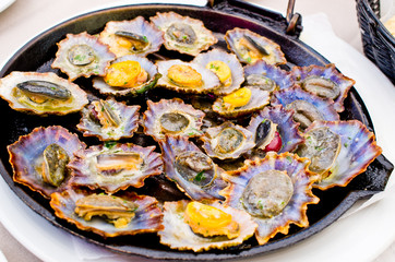 Poster Coquillage Limpets fried on the pan