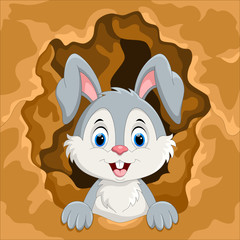 Cute rabbit out of the hole